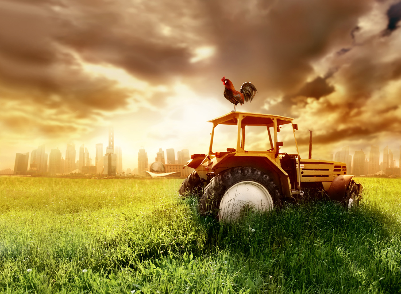 50-х днем, открытка трактористу
